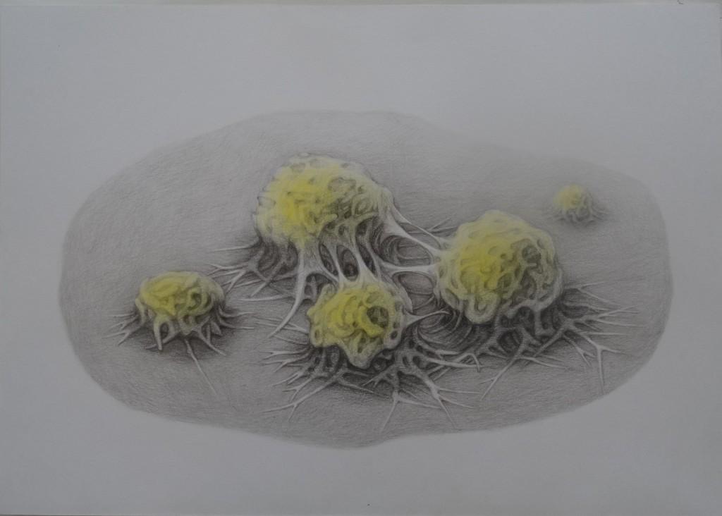 sans titre,crayon de couleur sur papier,29,7x42cm